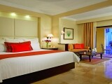 DRETU Junior Suite Room