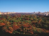 The Ritz-Carlton New York, Central Park