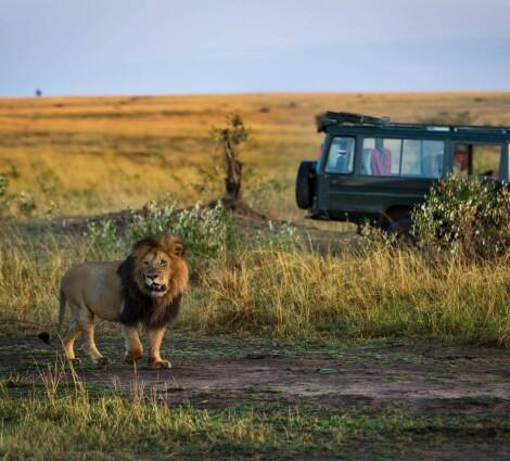Körutazás: Tanzániai kaland