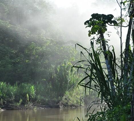 Hajóút az Amazonason